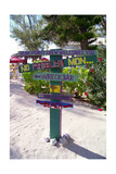 Colorful Signpost at Rum Point Cayman Islan Photographic Print by George Oze