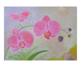 Red Orchids Giclee Print by Thi Nguyen