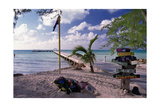 Rum Point View Grand Cayman Island Photographic Print by George Oze
