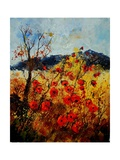 Red Poppies in Provence 45 Giclee Print by  Ledent