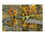 Fall Poudre reflection Photographic Print by Rich Ernst