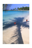 Tropical Beach with Pink Flamencos Aruba Photographic Print by George Oze