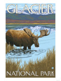 Moose Drinking at Lake, Glacier National Park, Montana Prints by  Lantern Press