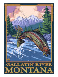 Fly Fishing Scene, Gallatin River, Montana Prints