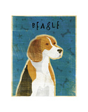 Beagle Art by John Golden