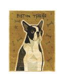 Boston Terrier Arte por John Golden
