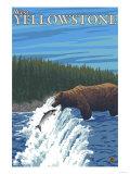 Bear Fishing in River, West Yellowstone, Montana Prints by  Lantern Press