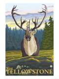 Caribou in the Wild, West Yellowstone, Montana Art by  Lantern Press