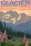 Spring Flowers, Glacier National Park, Montana Kunst