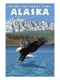 Bald Eagle Diving, Denali National Park, Alaska Affischer av  Lantern Press