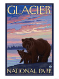 Bear and Cub, Glacier National Park, Montana Prints