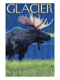 Moose at Night, Glacier National Park, Montana Art by  Lantern Press
