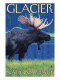 Moose at Night, Glacier National Park, Montana Art