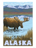 Moose Drinking at Lake, Denali National Park, Alaska Art by  Lantern Press
