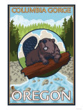 Beaver & River, Columbia Gorge, Oregon Print