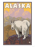 Mountain Goat, Alaska Poster by  Lantern Press