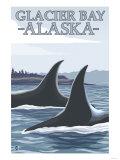 Orca Whales No.1, Glacier Bay, Alaska Posters