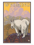 Mountain Goat, Wyoming Posters by  Lantern Press
