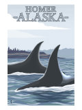 Orca Whales 1, Homer, Alaska Posters