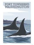 Orca Whales No.1, Port Townsend, Washington Prints by  Lantern Press