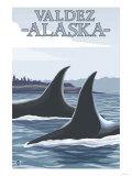 Orca Whales No.1, Valdez, Alaska Posters