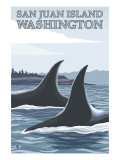 Orca Whales No.1, San Juan Island, Washington Art by  Lantern Press