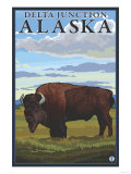 Bison Scene, Delta Junction, Alaska Print