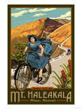 Mt. Haleakala Bicycle Rides, Hawaii Print by  Lantern Press