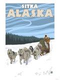 Dog Sledding Scene, Sitka, Alaska Poster