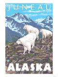 Mountain Goats Scene, Juneau, Alaska Poster by  Lantern Press
