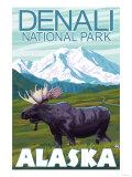 Moose Scene, Denali National Park, Alaska Posters