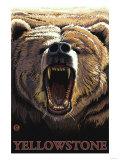 Bear Roaring, Yellowstone National Park Print by  Lantern Press