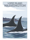 Orca Whales No.1, Lopez, Washington Posters by  Lantern Press