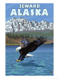 Bald Eagle Diving, Seward, Alaska Posters