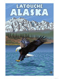 Bald Eagle Diving, Latouche, Alaska Print