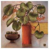 Passion Fruit and Vase Poster by Margaret Hughlock