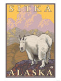 Mountain Goat, Sitka, Alaska Print by  Lantern Press