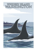 Orca Whales No.1, Whidbey, Washington Print by  Lantern Press