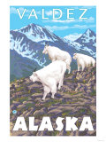 Mountain Goats Scene, Valdez, Alaska Print by  Lantern Press
