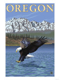 Bald Eagle Diving, Oregon Print by  Lantern Press