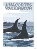 Orca Whales No.1, Anacortes, Washington Posters