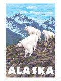 Mountain Goats, Alaska Posters by  Lantern Press