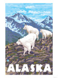 Mountain Goats, Alaska Posters