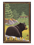 Black Bear in Forest, Idaho Pósters