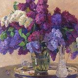 Lilac Cluster Plakater af Valeriy Chuikov