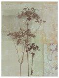 Silver Foliage II Poster by Ella K.
