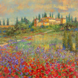 Provencal Village XI Print by Michael Longo