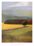 Field of Gold Prints by Judith D'Agostino