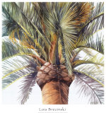 Roma Palm Prints by Lois Brezinski