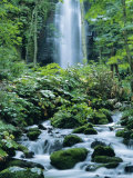 Oirase Valley Waterfall, Fed by Lake Towada-Ko, Aomori, Northern Japan Photographic Print by Christian Kober